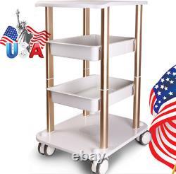 Beauty SPA Trolley Pedestal Rolling Cart Wheel Stand Salon Instrutment Storage