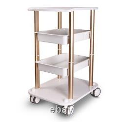 Beauty Salon Machine Stand Rolling Cart Beauty SPA Trolley 2 Shelf ABS Aluminum
