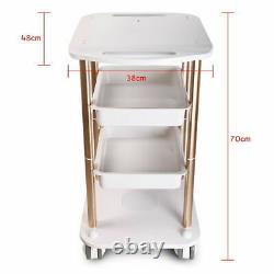 Salon SPA Trolley Stand For Beauty Machine Equipment Cart 4 Universal Wheel New